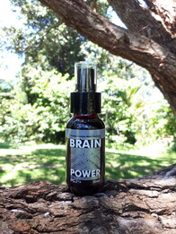 Brain Power 50ml